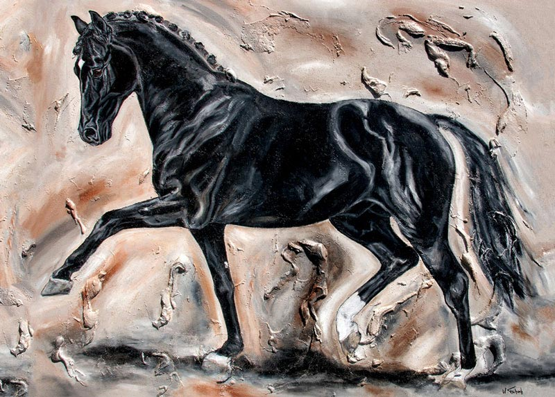 Dressurpferd Pferdebild