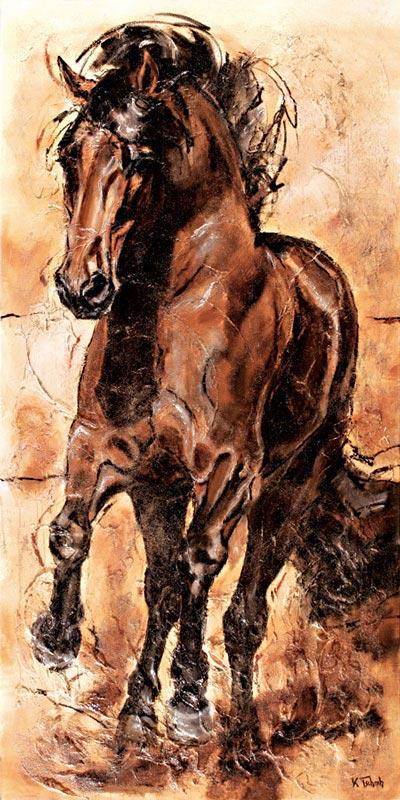 PRE im Galopp Pferdebild