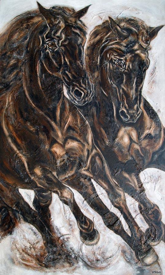 Pferdebild Rappen
