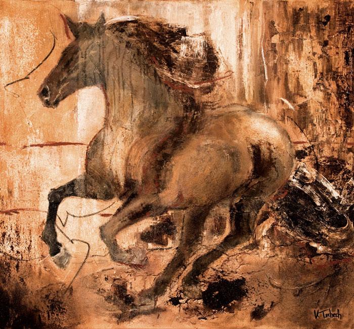 Pferdekalender Pferdebilder