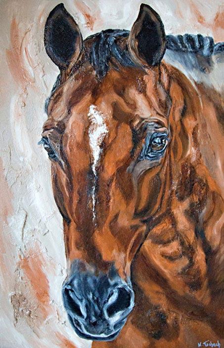 Pferdeportrait vom eigenen Pferd Kerstin Tschech
