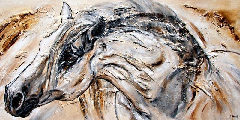 Pferdeportrait spanischer Hengst von Kerstin Tschech