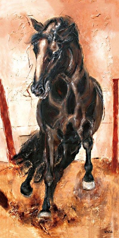 Spanischer Hengst Pferdebild gemalt