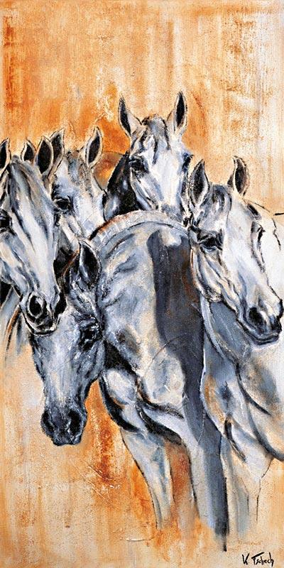 Stuten Pferdeportraits Kerstin Tschech